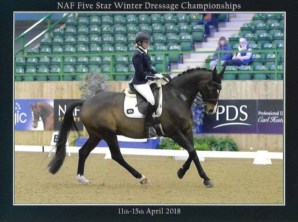 NAF 5 Star Winter Dressage Champions 2018